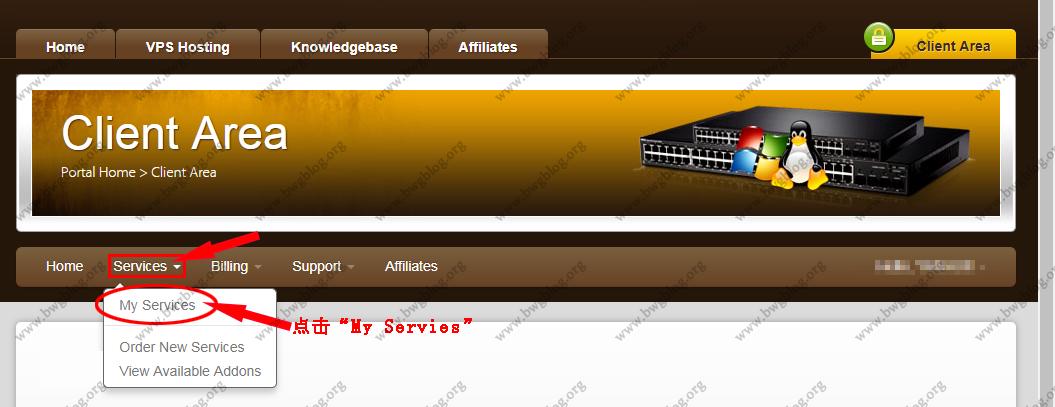 BandwagonHost搬瓦工VPS如何登录后台KiwiVM管理面板